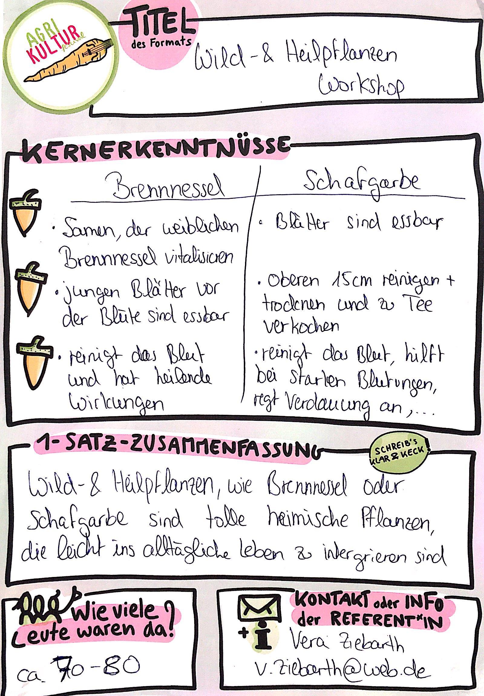 AgriKultur Graphic Recording_Heilpflanzenworkshop